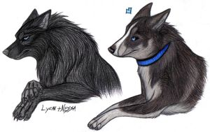 Lycan + Nessa by xDember