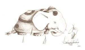 Elephant Tortoise by Syrupjuice