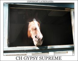 CH gypsy supreme by LaurenAnisa