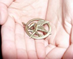 Mocking Jay Pin :3 by Petpettails123