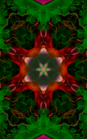 Six Pointed Christmas Star by FlyingMatthew