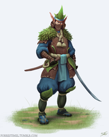 Elf Swordsman by ForrestImel