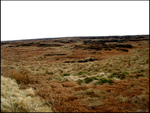 The Never Ending Moors by theskitzo