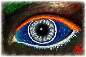 The Eye of Mother Nature (2014) by Meekochan