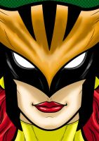 Hawkgirl by Thuddleston