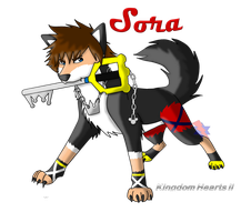 Wolf Sora- Ready for Battle by AwsmYoshi
