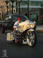 Cruisin Da Custom Bagger by Swanee3