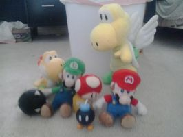 My Mario Plush and Figures by Rotommowtom