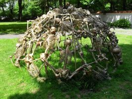 Weird Skeleton Installation 1 by stock-werk