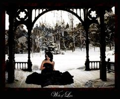 Web of Lies by jensequel