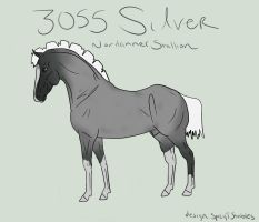 3055 Silver by Tuckerlyn