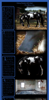 Gimp Horse Manipic Tutorial by Skullb3at