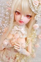 Cream Rose ::02:: by prettyinplastic