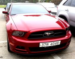 Hot Red Mustang Coupe by toyonda