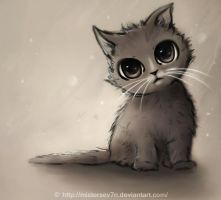 Little kitten by MisterSev7n