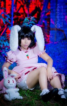 Tewi Inaba by Witchiko