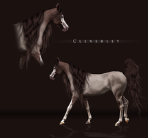 OC: Cleverley (SOLD) by BlueHorseStudios
