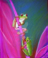 Tree Frogs by Hugsy25