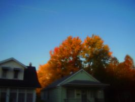 Autumn Dream by Pentacle5