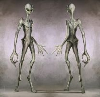 Alien One concept- The greys by The4thPredator