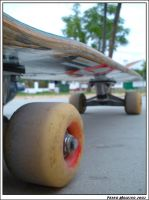 Skateboarding For Life by moleiro