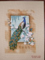 Cross Stitch: Beautiful Bird by DragomirEmil