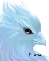 anivia for daxter by acorns