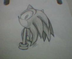 Sonic The Hedgehog by VirusTE