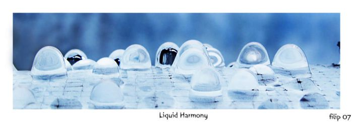 Liquid Harmony 2 by FLixter