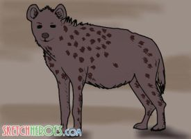 hyena by SketchHeroes