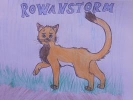 Rowanclaw is here by FoxAndLeo4Ever