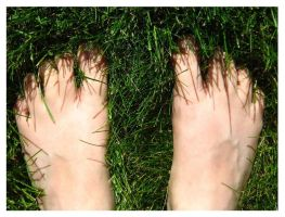 Feet Dipped in Summer by punchedtoast