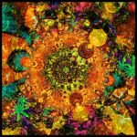 New Universe II by Direct2Brain