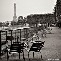 August in Paris by Yousry-Aref