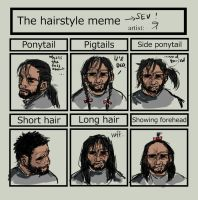 hairstyle meme by theOvercoat