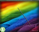 Colorful - 1st Place by macrophoto