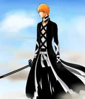 The New Bankai by Mizashi