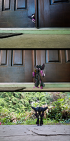 Skywarp Braves the Outdoors by ImmortalSpark