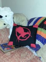 Catching Fire Cushion by Ulla-Andy