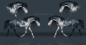 OC: Merlot by BlueHorseStudios