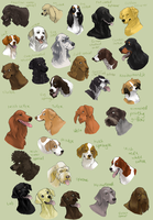 dog icons - SPORTING GROUP by shelzie
