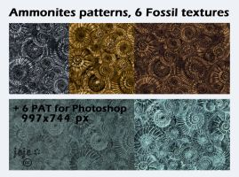 Ammonites patterns, 6 Fossil textures by jojo-ojoj