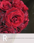 """R is for """"Love"""" in floral by Toash"""