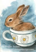 Teacup Rabbit ACEO by Pannya