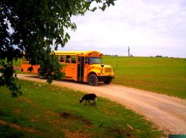Way to school by MannyDiax
