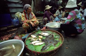 Seam Reap market by whisperingsmith