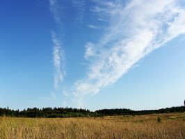 Sky by elsson