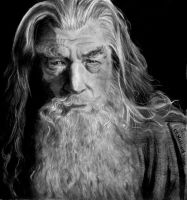 Gandolf, Lord of the Rings by Catluckey
