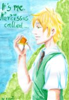 It's me Narcissus called... by 1Kasumi