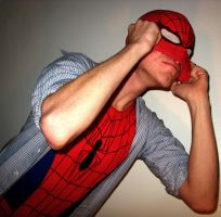 Hero Time For The Webslinger by Superchica